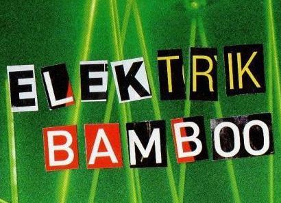 Logo Elektrik bamboo